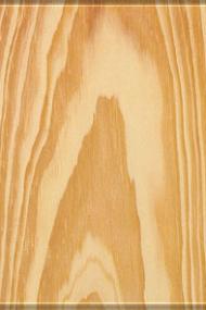 Pinus (Aparelhado e Bruto)